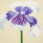 Australian Native Violet cross stitch pattern