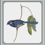 Banded Wren Male cross stitch pattern