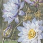 Blue White Water Lily cross stitch pattern