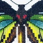 Green Birdwing Butterfly cross stitch pattern