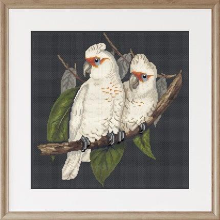 Long-billed Cockatoo cross stitch pattern