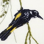 New Holland Honeyeater cross stitch pattern
