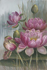 Pink Water Lily source