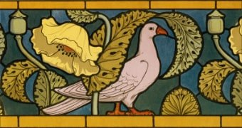 Stained Glass Pigeon source