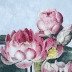 Water Lily 2 cross stitch pattern