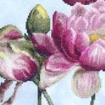 Water Lily 4 cross stitch pattern