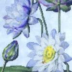 Water Lily 5 cross stitch pattern