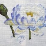 Water Lily 1 work in progress 4