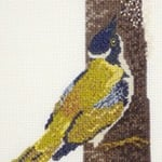 White-Naped Honeyeater cross stitch pattern