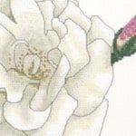 White Rose cross stitch pattern
