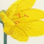 Yellow Crocus cross stitch pattern