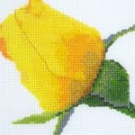 Yellow Rose Bud cross stitch pattern
