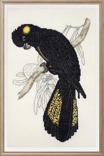 Yellow-tailed Black Cockatoo cross stitch pattern